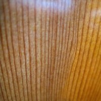 Tight spruce grain