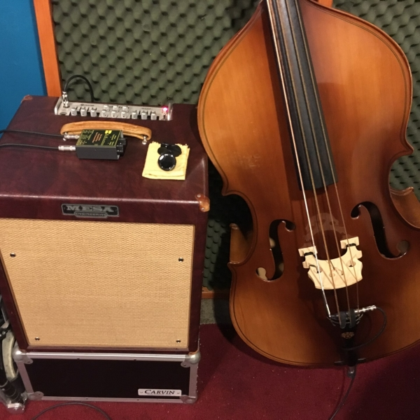 Mesa Walkabout bass amp, King Moretone double bass, and K&K preamp
